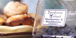 You'll want to try the Blueberry Muffin recipe in this episode!